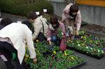 ピュアグリーン祭り2009_03